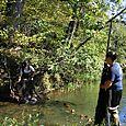 Fish Sampling, downstream control site